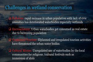 Challenges of Conserving Wetlands Info 2