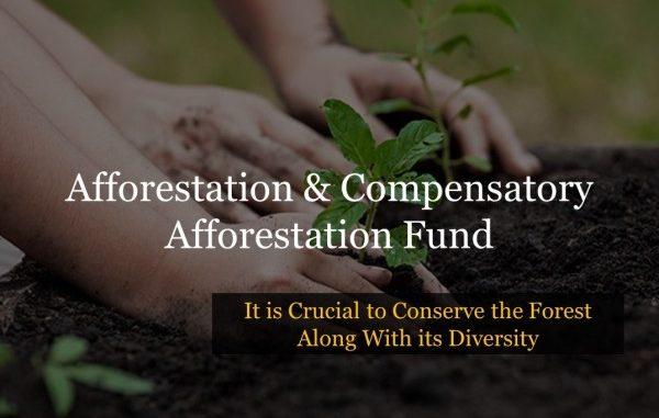 Afforestation & Compensatory Afforestation Fund