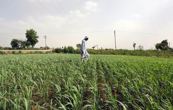 Farmer's Income: From Other side Of The Prism