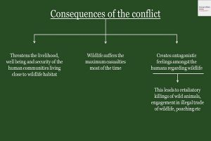 Consequences of the conflict Info 1